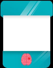 Imagem de uma card sobre Cérebro e Medula Espinhal